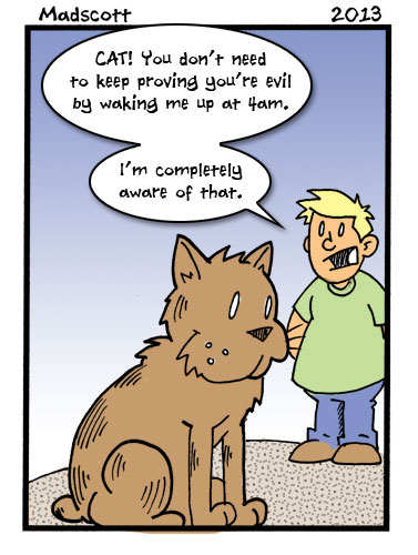 Cats are Evil